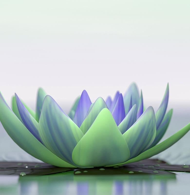 psychek-lotus